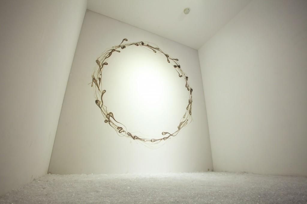 日日解い|hibitohi (Seeing Life-Circulation)